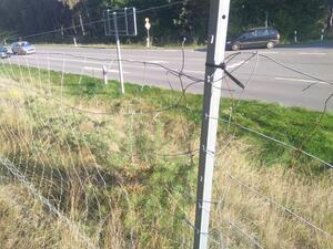 Der Weg wird durch eine vorsätzliche, unpassierbare Barriere (z.B. Zaun) blockiert