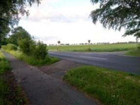 Für den Radverkehr relevante Querung wird durch Sichteinschränkung (z.B. Baumwuchs) zur Gefahr