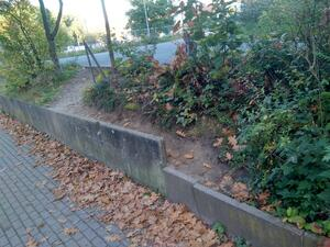 Ein Trampelpfad über ein terassiertes Gelände zeigt den Bedarf an Treppe / Rampe
