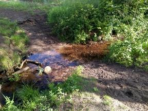 Ein Trampelpfad zeigt den Bedarf einer trocknen Wasserlaufquerung